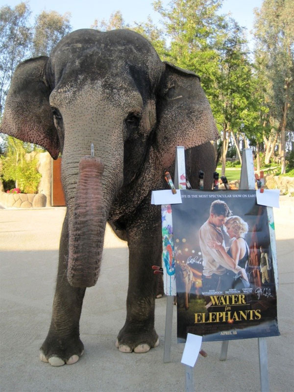 water for elephants critique Water for elephants hits theaters on april 15th, 2011 cast: reese witherspoon, robert pattinson, christoph waltz, james frain based on the acclaimed bestseller, water for elephants presents an.