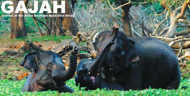 Publication Of The Gajah International Elephant Foundation