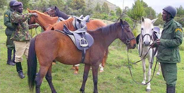 Mounted Horse Patrol, Anti-Poaching, Kenya