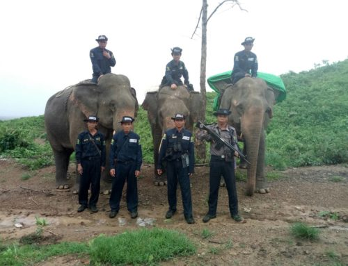Myanmar Emergency Elephant Response Units (EERUs)